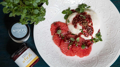 burrata-mit-grapefruit-und-koriander-hibiskushonig-rimoco-16x9_480x270